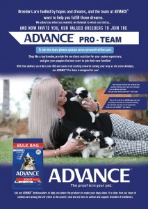 ADVANCE ad Sept 2019