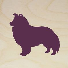 72ec9837c12b7246c02be334a32e84a4--shetland-sheepdog-dog-silhouette